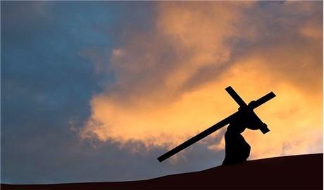 Nhân chuyến công du của Đức Thánh Cha Phanxicô tại Châu Mỹ :