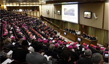 Giáo huấn của Đức Thánh Cha Phanxicô chuẩn bị Thượng Hội đồng Giám mục thế giới về Gia đình