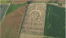Tác phẩm nghệ thuật về Năm Thánh trên cánh đồng