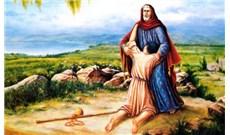 SÁM HỐI VỀ NHÂN BẢN, NỘI TÂM VÀ LO CHO NGƯỜI ĐAU KHỔ