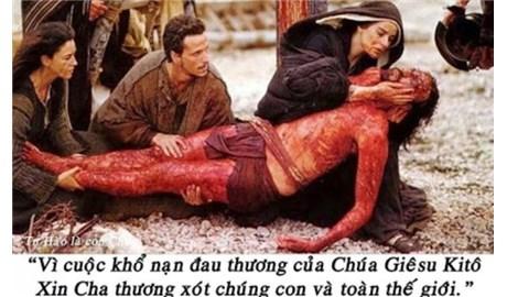 Đôi chút tâm sự về lòng thương xót Chúa trong đời tôi