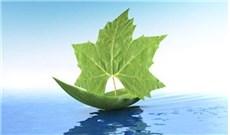 Thông báo về ngày Ăn Chay, Cầu Nguyện cho việc bảo vệ môi trường