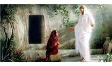 Trở thành chứng nhân đáng tin của Chúa Phục Sinh