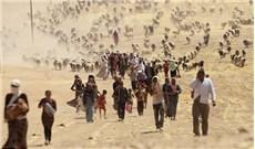 Tòa Thánh và làn sóng người tị nạn