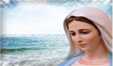 Cảm nghiệm về tình yêu của Đức Mẹ Maria