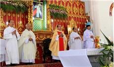 Giáo xứ Tân Mỹ kỷ niệm 200 năm đón nhân