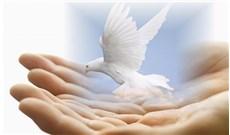 Cảm tạ chúa xót thương từ thân phận yếu hèn