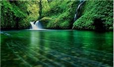 Thiên nhiên