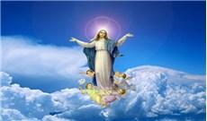Xin Đức Mẹ lên trời cứu giúp hiện tình đức tin