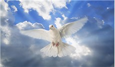 Thiên sứ