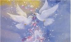 Hạnh phúc và bình an đích thực