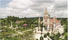 Khoảng xanh trong khuôn viên nhà thờ