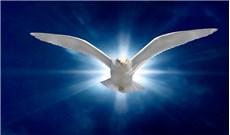 Chúa Thánh Thần, một ân huệ