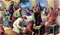 Trách nhiệm với vạn vật của Chúa