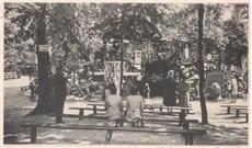 Những câu chuyện xung quanh hang Massabielle - Lộ Đức (P16)