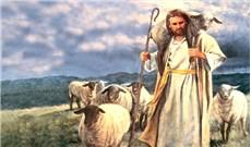 Chiên Thiên Chúa