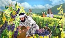 Tá điền và vườn nho Nước Thiên Chúa