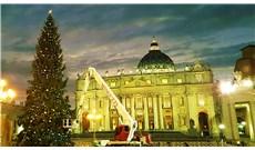 Vatican chuẩn bị chào đón Giáng sinh