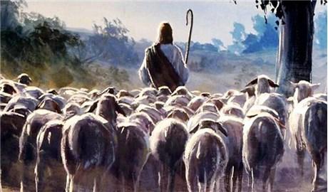 Vị chủ chăn  trong tâm trí con chiên