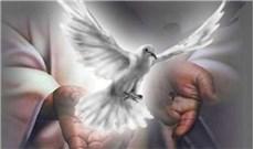 Chúa Thánh Thần hoạt động trong thế gian