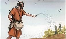Thái độ của người đón nhận hay là tấm lòng của người gieo ?