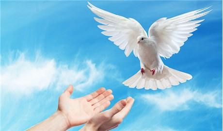 Thánh Thần  trong đời Chúa Giêsu Kitô