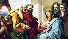 HỌC HỎI PHÚC ÂM CHÚA NHẬT XXVII THƯỜNG NIÊN NĂM B