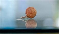 Quả cân 3.000 năm tuổi từ thời Ðền thờ thứ nhất