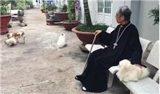 Ðàn cún cưng của vị Giám mục
