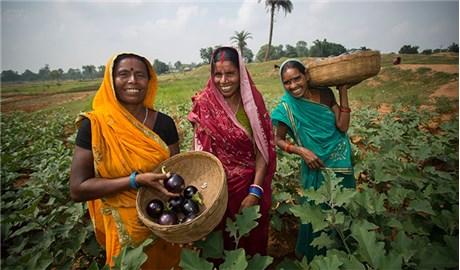 Bình quyền cho nữ giới ở nông thôn