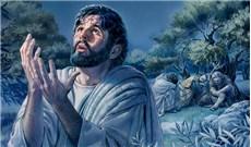 Từ trên Thánh Giá nhìn xuống Chúa Giêsu thấy những ai? (P2)