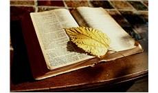 Ðức Giáo Hoàng mời gọi giới trẻ đọc Thánh Kinh