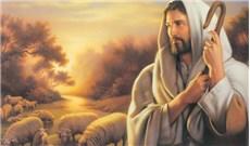 Chung lời cầu nguyện với vị chủ chăn Giáo hội
