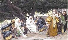HỌC HỎI PHÚC ÂM CHÚA NHẬT XVI THƯỜNG NIÊN NĂM B