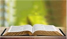 Học cách đọc hiểu kinh thánh