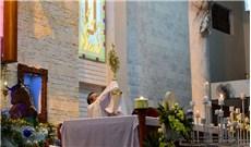 Các Giáo phận với tháng Truyền giáo ngoại thường