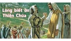 HỌC HỎI PHÚC ÂM CHÚA NHẬT XXVIII THƯỜNG NIÊN - NĂM C