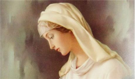 Dâng Mẹ hoa yêu thương khiêm nhường
