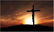 Suy tôn Thánh giá