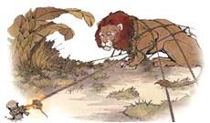 Chuyện cũ kể lại: hai ngụ ngôn về chuột