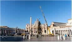 Cây thông Noel từ Slovenia về đến Vatican