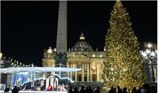 Hang đá và cây thông Giáng Sinh ở Vatican