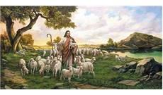 HỌC HỎI PHÚC ÂM CHÚA NHẬT IV PHỤC SINH - NĂM A