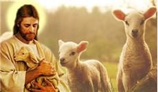 Chiên