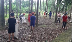 Gieo thói quen bảo vệ môi trường cho thiếu nhi
