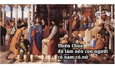 HỌC HỎI PHÚC ÂM CHÚA NHẬT XXVII THƯỜNG NIÊN - NĂM B