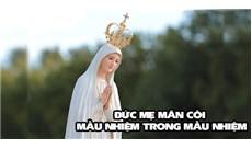 ĐỨC MẸ MÂN CÔI - MẦU NHIỆM TRONG MẦU NHIỆM