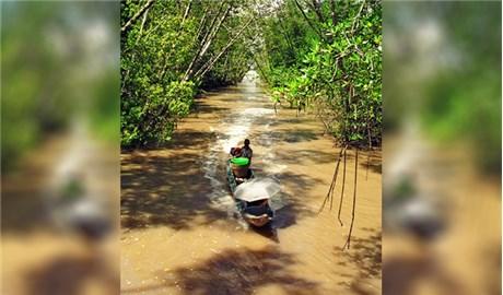 Thử nhìn biến động môi trường từ bán đảo Cà Mau