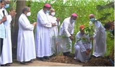 Một tín hữu Công giáo Bangladesh một cây xanh