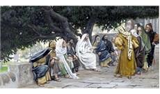 HỌC HỎI PHÚC ÂM CHÚA NHẬT XVI THƯỜNG NIÊN - NĂM B